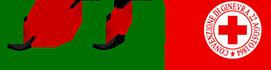 Fondazione Villa Maraini Logo